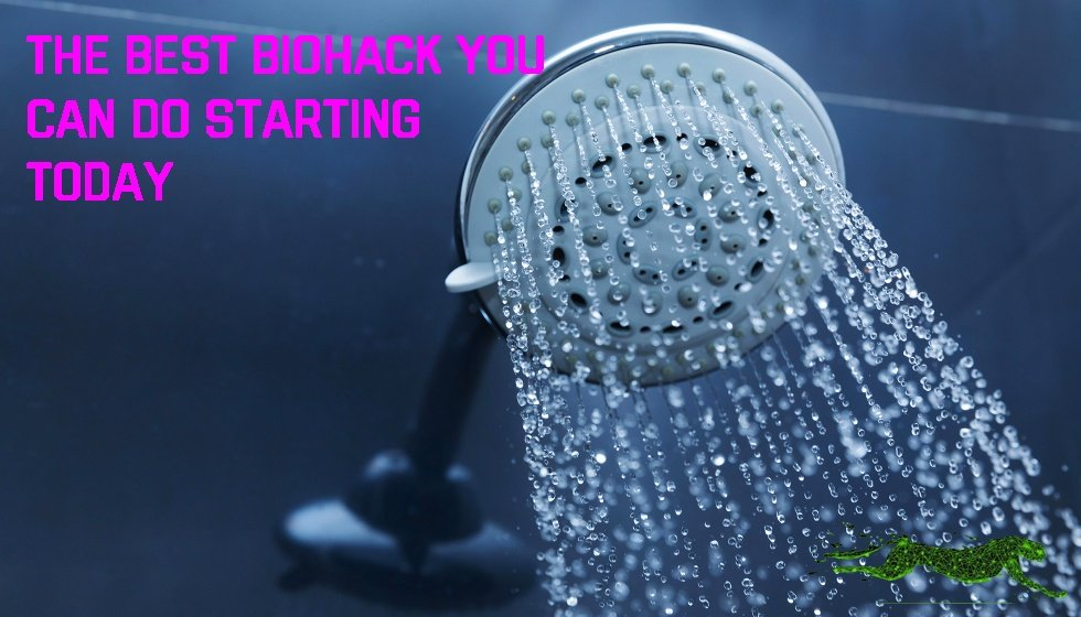 Cold Shower THUMBNAIL
